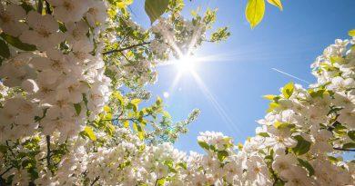 vacanze di primavera