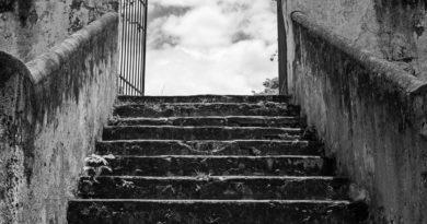 Salire le scale: un toccasana per il cuore
